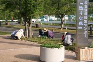平成27年5月17日(日)環境美化活動-3