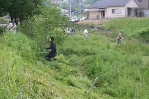 H28.5.15草刈り3