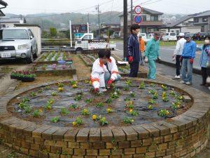 花壇植栽【水野】