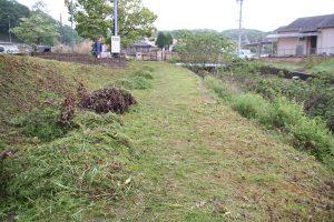草刈り後1